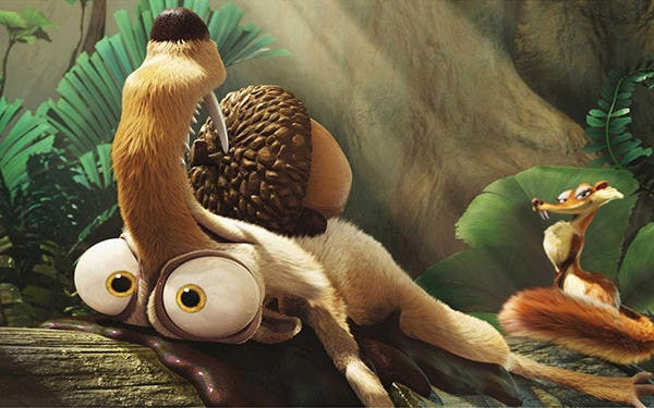 funny 3d animal wallpapers desktop copy1