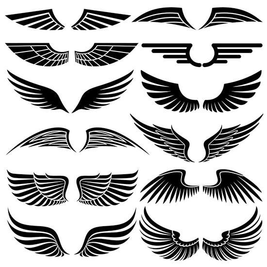 12 wing brushes