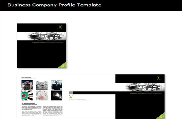 Simple Company Profile Template. After Effects Template Clean