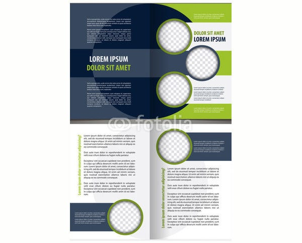 vector empty bi fold brochure template