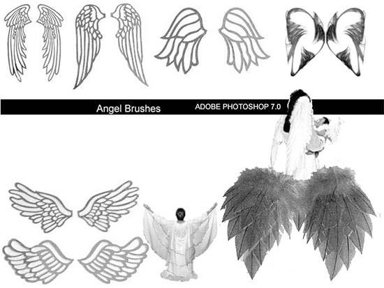 angel wing brush set