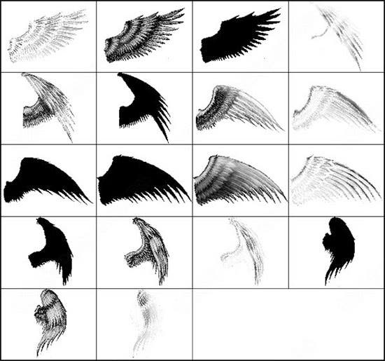 angel wings photoshop brush set