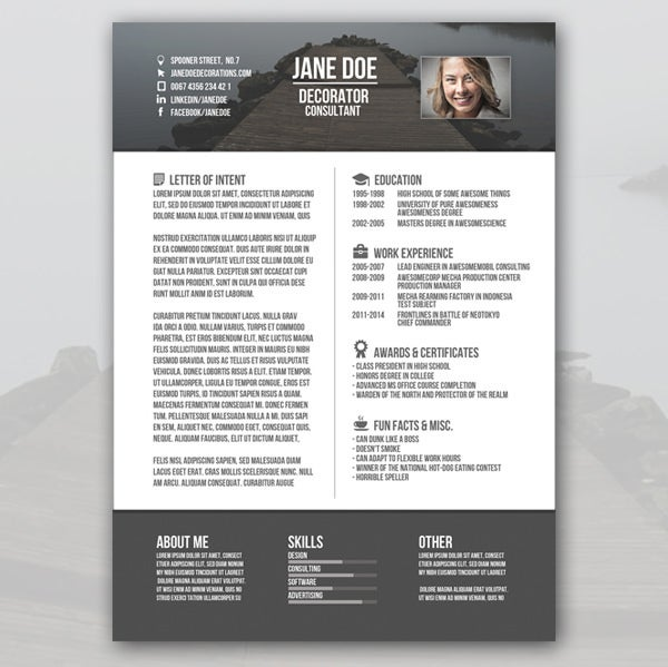 consultant creative resume template - Interesting Resume Formats