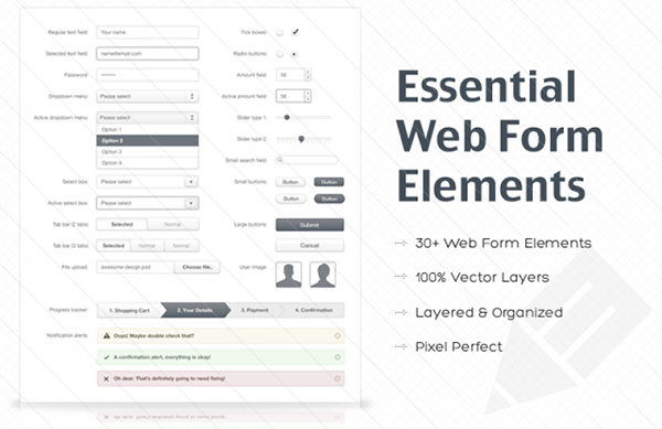 Essential Web Form Elements