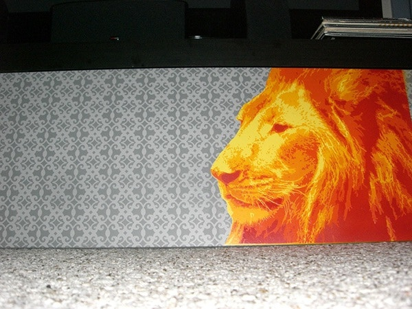 lion spray paint stencil art