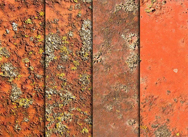 rust moss and metal textures