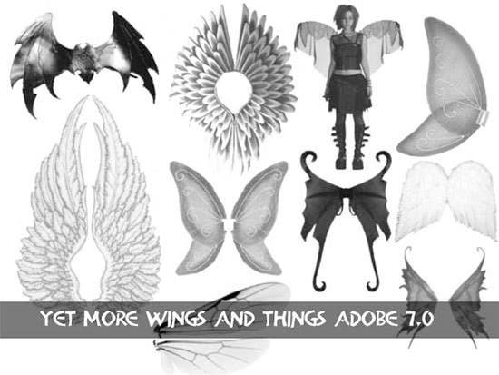 wings and things set