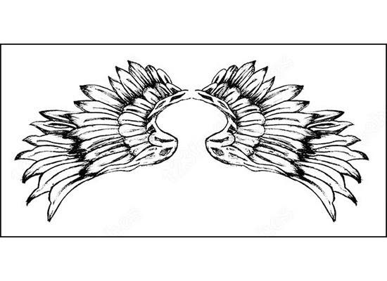 hand drawn wings birds brush