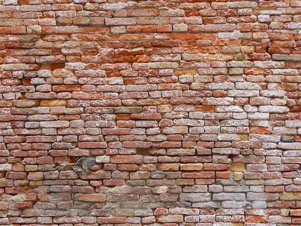 moldy bricks wall venice