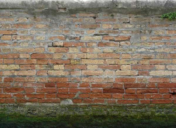 mossy brick wall texture