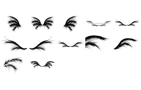 wings brushes 3