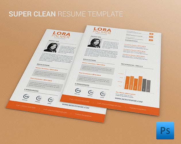 Psd Resume Template   Free Samples Examples Format Download