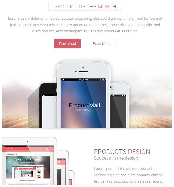 product email marketing template