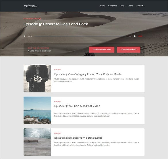 premium multimedia wordpress theme