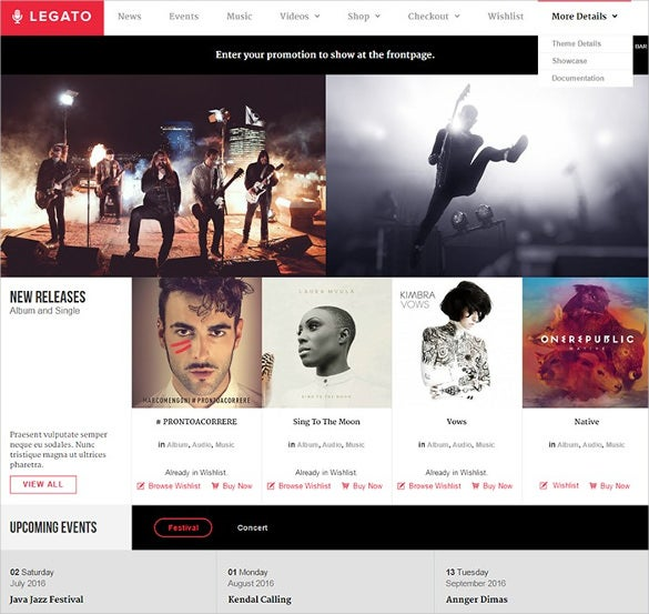 feature rich multimedia wordpress theme