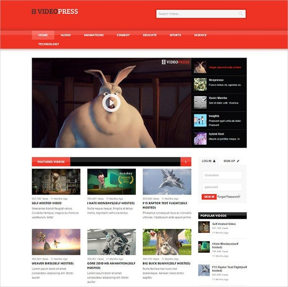 self hosted video streaming wordpress template