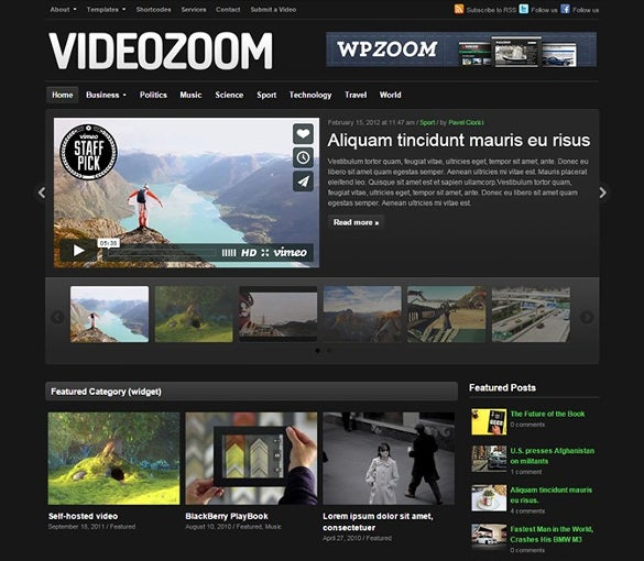 perfect video wordpress theme