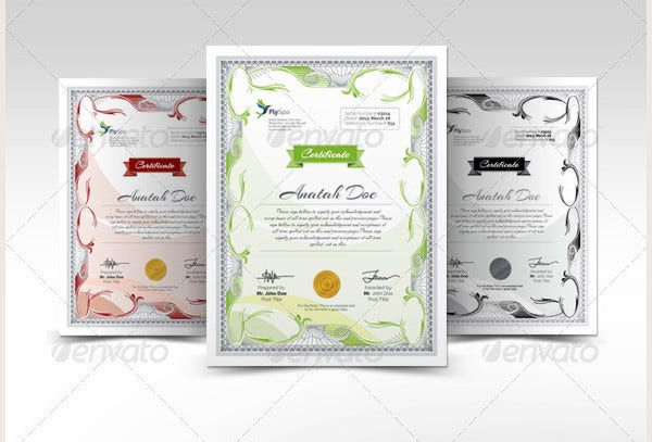 Modern Multipurpose Certificates