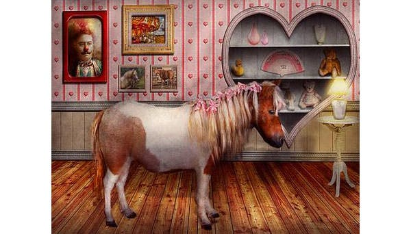 animal the pony canvas print canvas art by mike savad