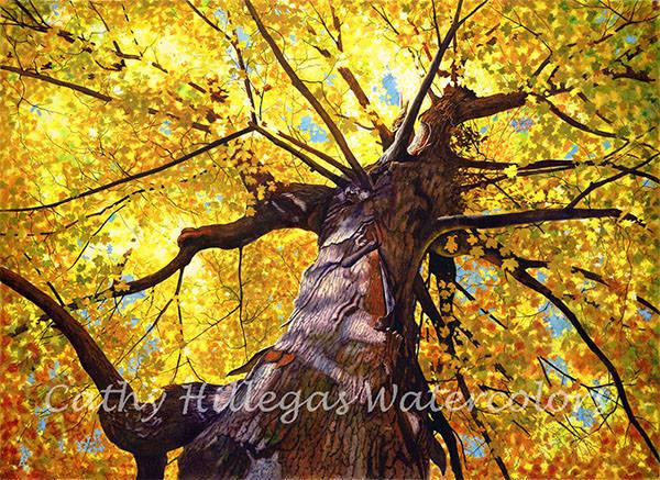 autumn tree canvas art giclee print of original watercolor