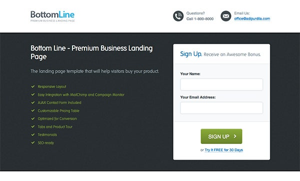 bottom line premium business landing page