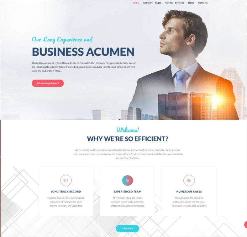 business financial consulting wordpress theme 788x756
