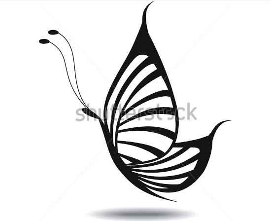 butterfly silhouette isolated
