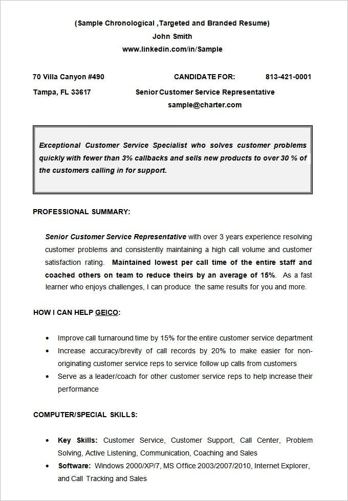 CV Sample Chronological Resume Template