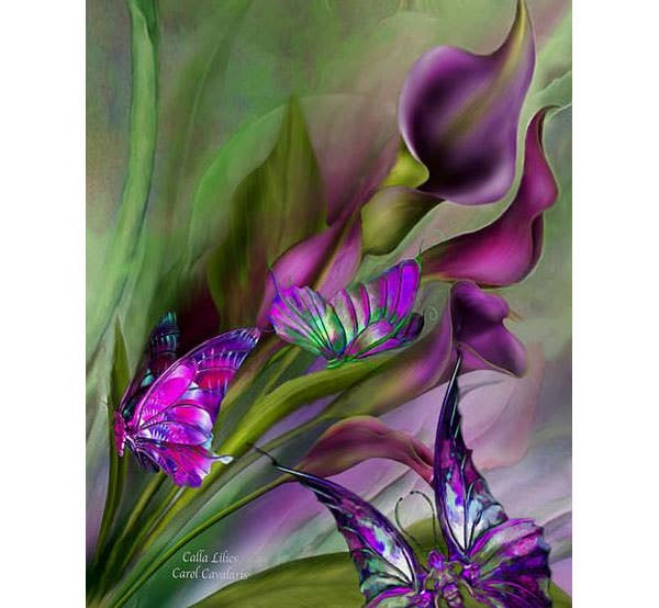 calla lilies canvas print canvas art by carol cavalaris