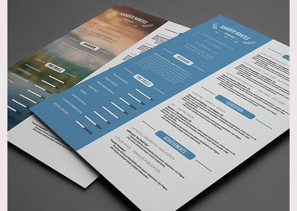 PSD Resume Template 51 Free Samples Examples Format Download