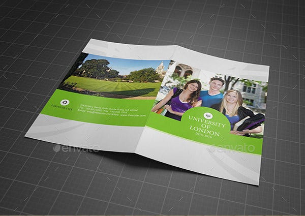 College Or University Bifold Brochure Template