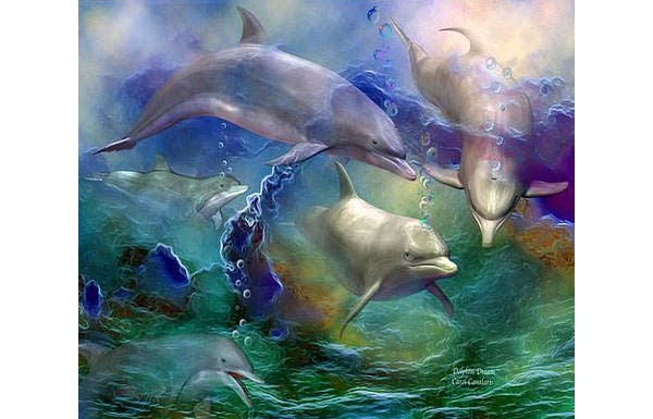 dolphin dream canvas print canvas art by carol cavalaris