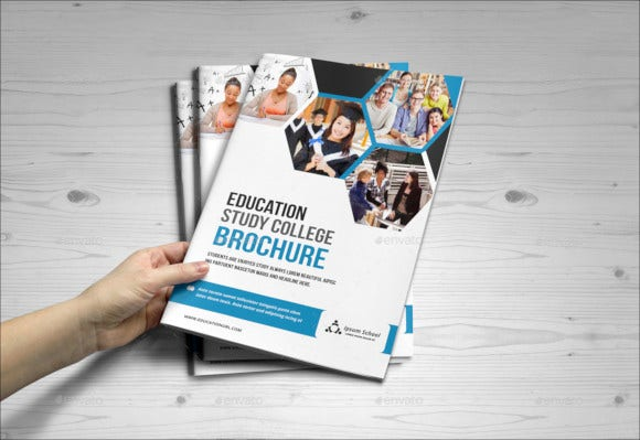 education admi ssion college design brochure
