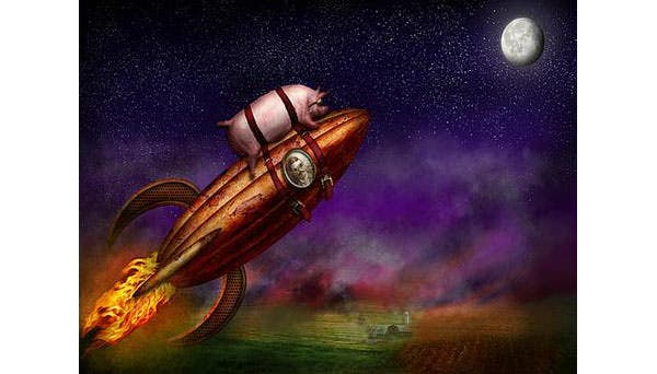 flying pig rocket to the moon or bust canvas print canvas art by mike savad