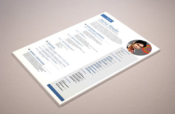 free simple professional resume template - Professional Resume Free Download