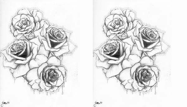 graffiti rose drawing