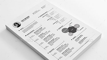job resume examples