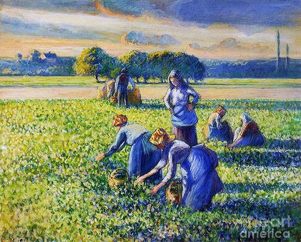 picking peas by pg reproductions picking peas painting picking peas fine art prints and posters for sale