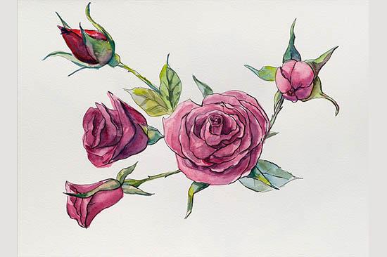 roses brunch