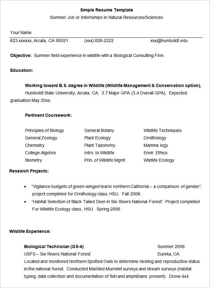 Simple Job Resume Template  Example Of Resume  Resume Format