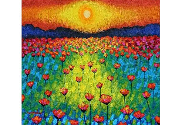 sunburst poppies canvas print canvas art by john nolan