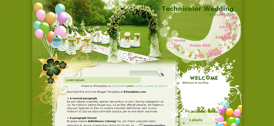 technicolor wedding blogger template btemplates