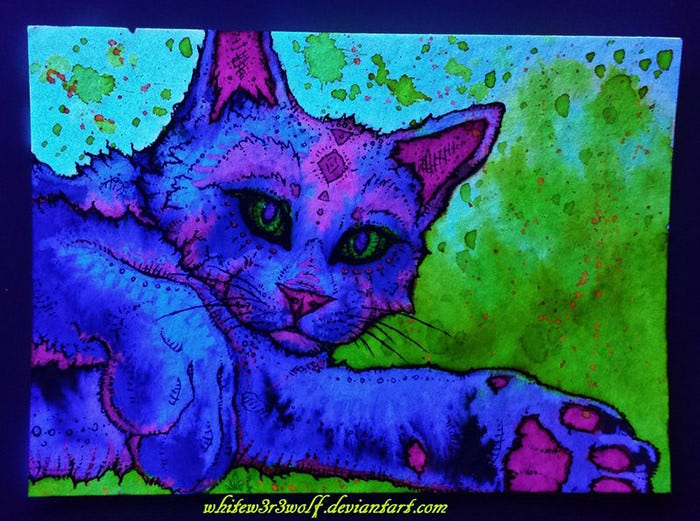 Psychedelic Cat Glow