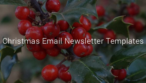 christmasemailnewslettertemplates