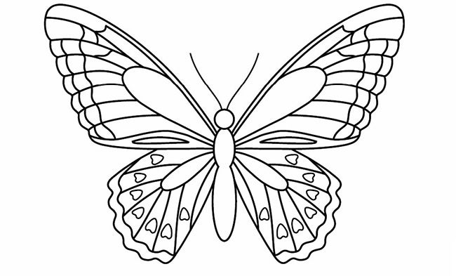 30+ Butterfly Templates – Printable Crafts & Colouring Pages
