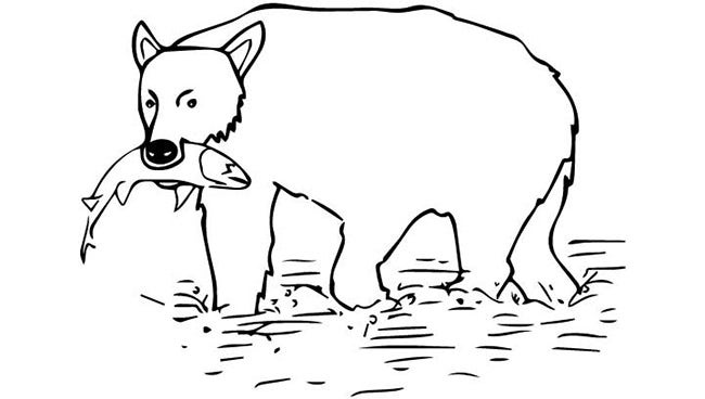 Bear Template - Animal Templates