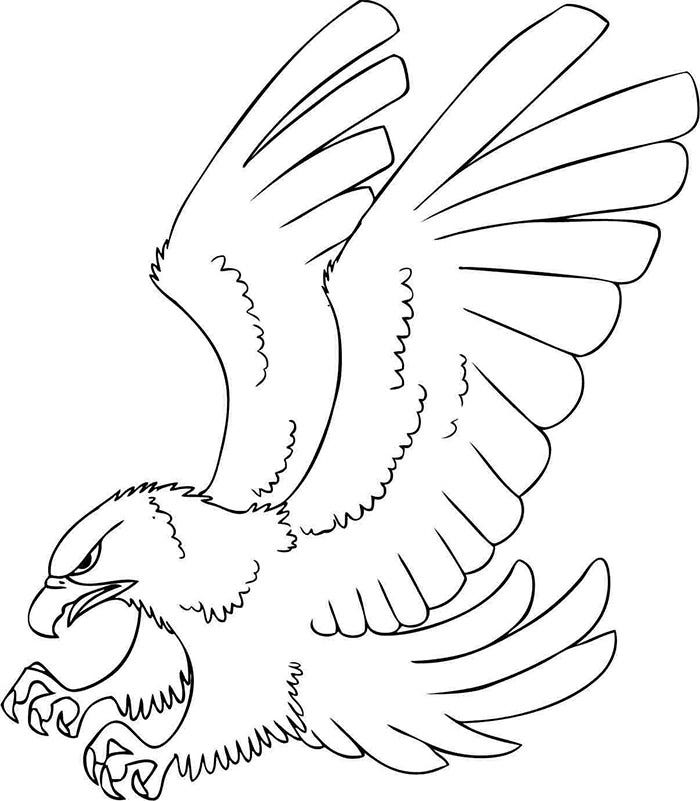 Cute Eagle Drawing