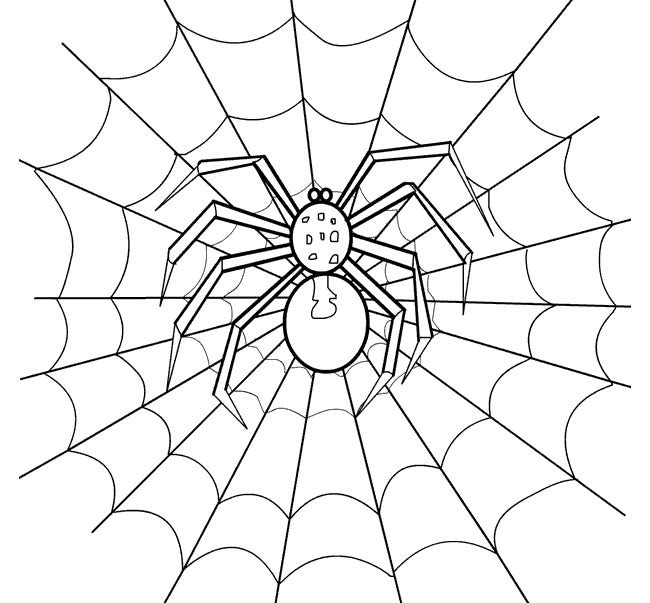 It's just a graphic of Impeccable Spider Template Printable