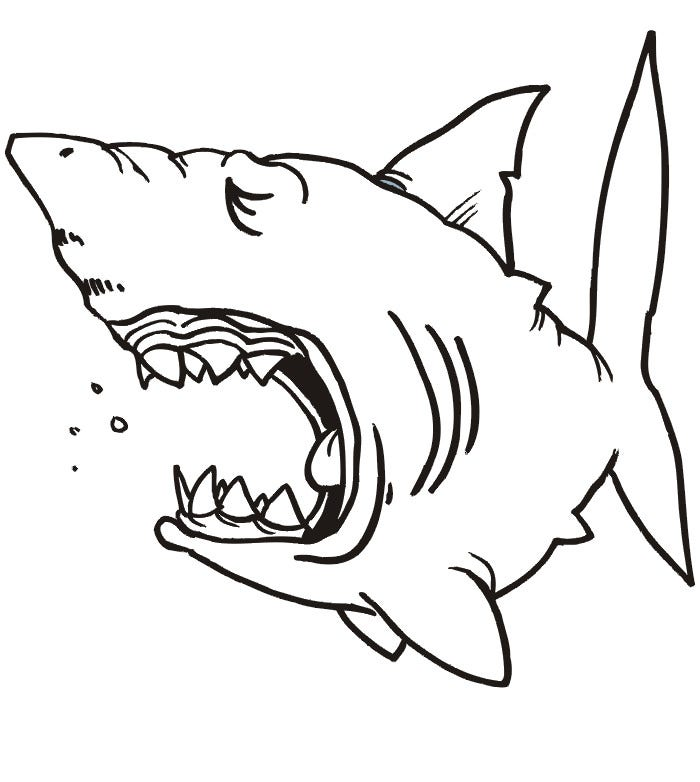 65 sea creature templates printable crafts colouring for Free printable shark coloring pages