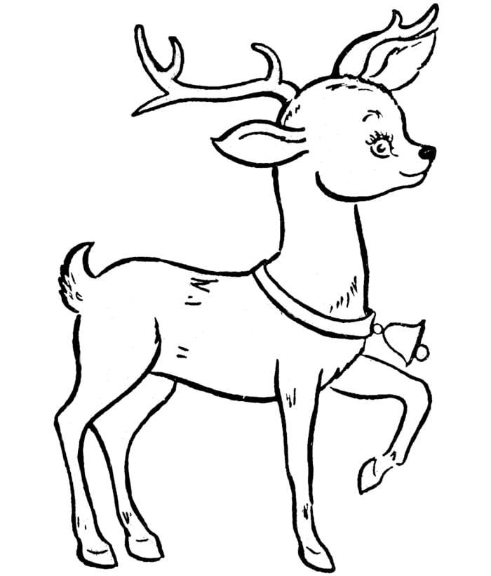 Cute Little Reindeer Template